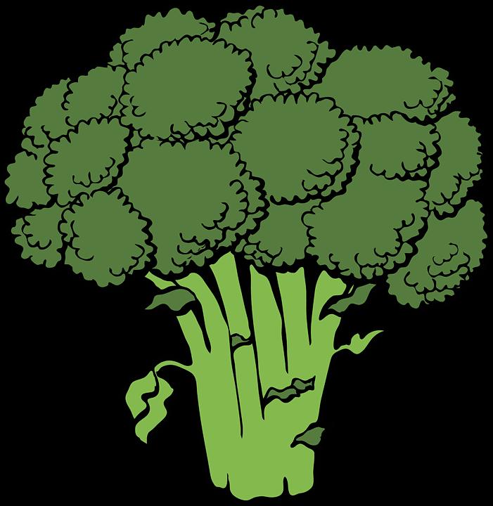 brokkoli gesund
