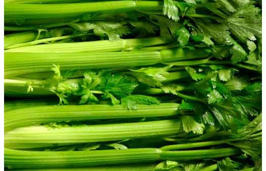 grüner selleriesaft